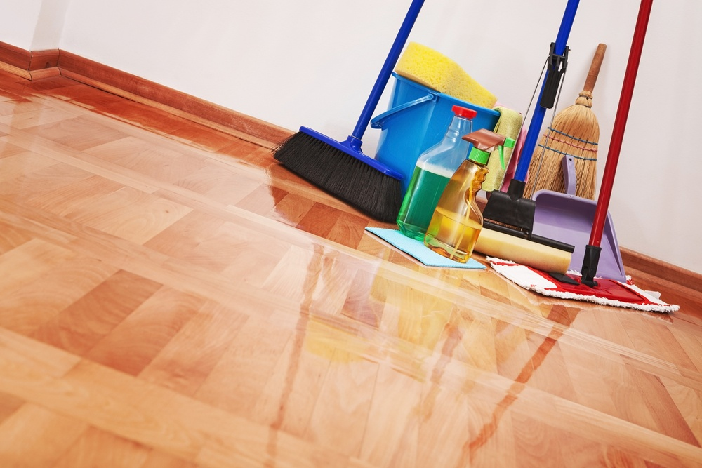 Bin There Dump That Getting Organized Household and Kitchen Cleaners.jpg