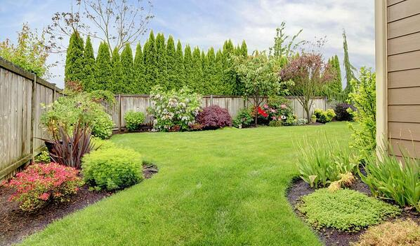 Landscaped backyard in Alberta