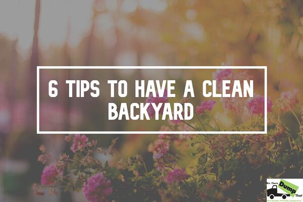 clean-backyard-new