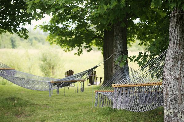 hammocks-on-trees-in-backyard-garden