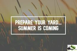 summer-yard-cleanup-new