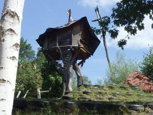 tree-house-in-backyard